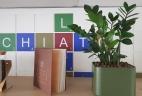 Aude Plantes aménagement d'espace intérieur