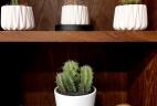 Aude plantes glossaire entretien location plantes