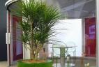 Aude plantes entretien location espace de travail