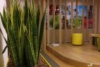 Aude plantes aménagement espace de travail et de réunion