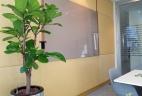 Aude plantes aménagement entretien location