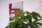 Aude plantes aménagement et entretien, location bac pot